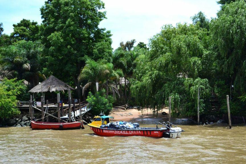Dschungelvegetation vor den Toren von BuenosAires