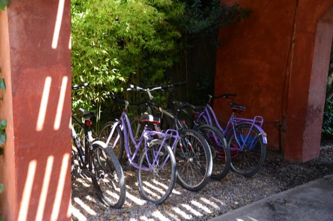 Fahrräder stehen für Gäste kostenlos bereit.