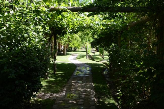 Park der Finca Adalgisa.