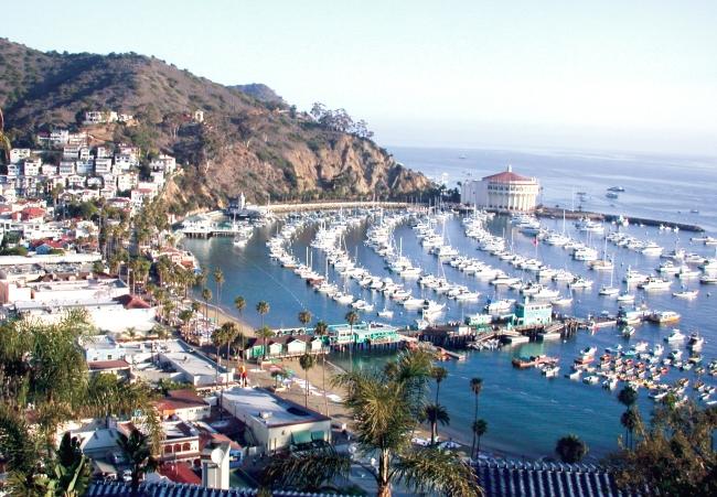 Die Bucht von Avalon mit Yachthafen und Kasino.