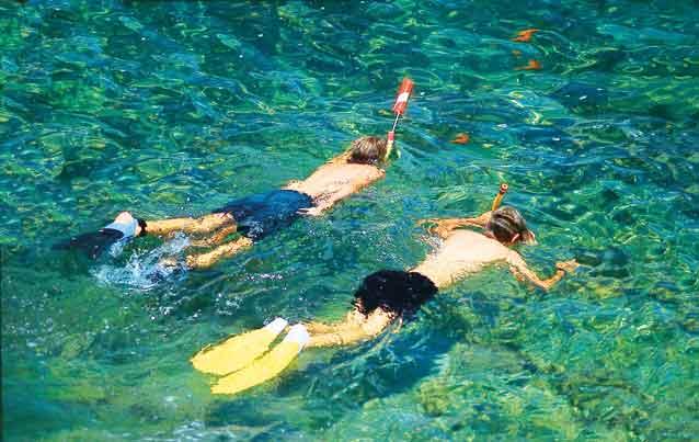 Schnorchelparadies Catalina.
