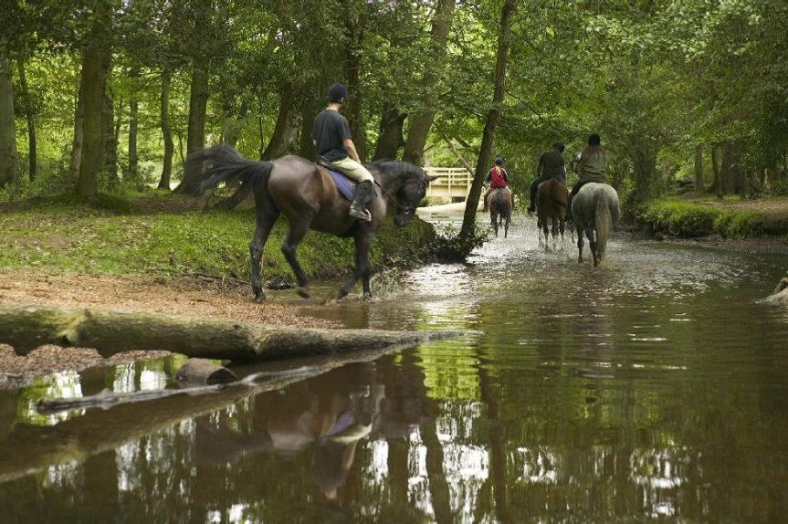 Wer gerne reitet, hat nach dem Unterricht ausreichend Gelegenheit dazu.