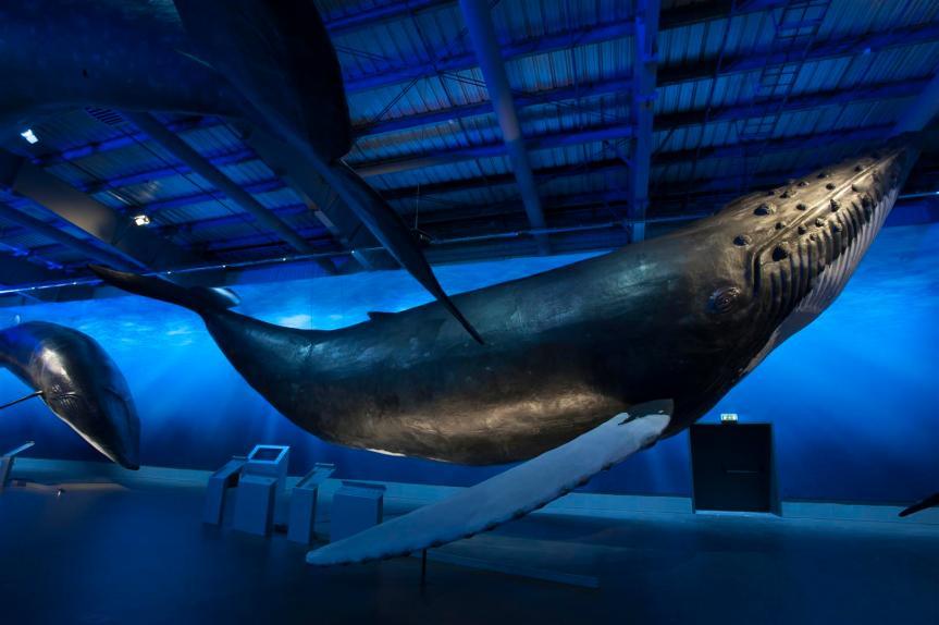 Walmuseum