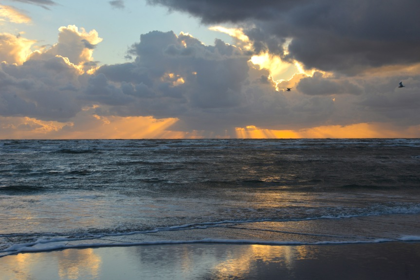 fano-strand