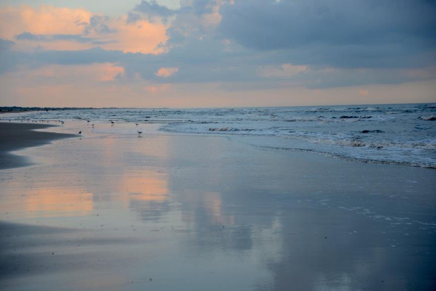 Herbstliches Wattenmeer –Fotosafari