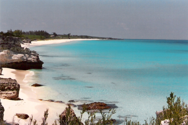 great_harbor_cay_horseshoe