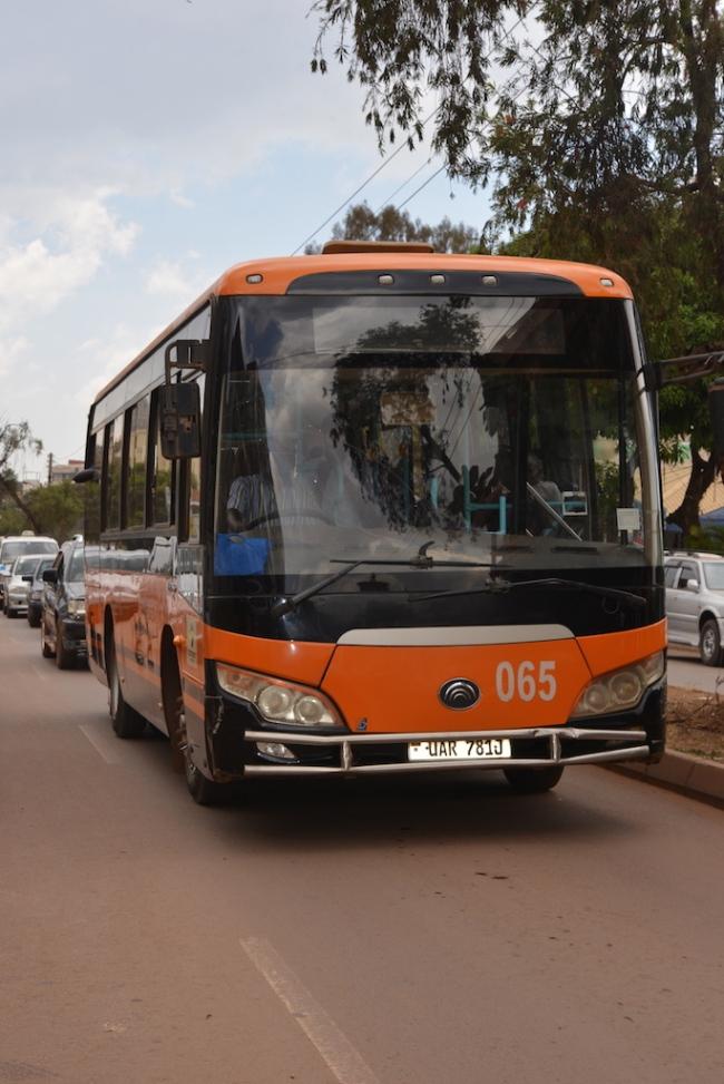 2 Pioneer Bus