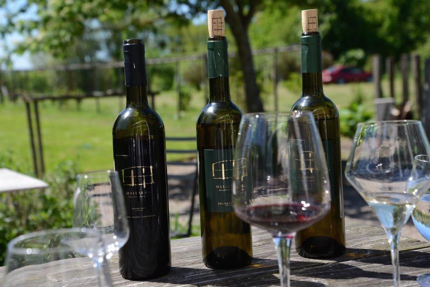 Schwedens erstes Bio-Weingut